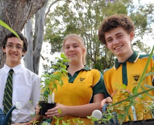 High School Australien Corinda