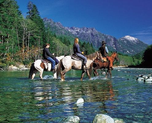 High School Canada Chilliwack heste